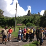 Shane Ivey explains the Nimbin Rocks property to the group