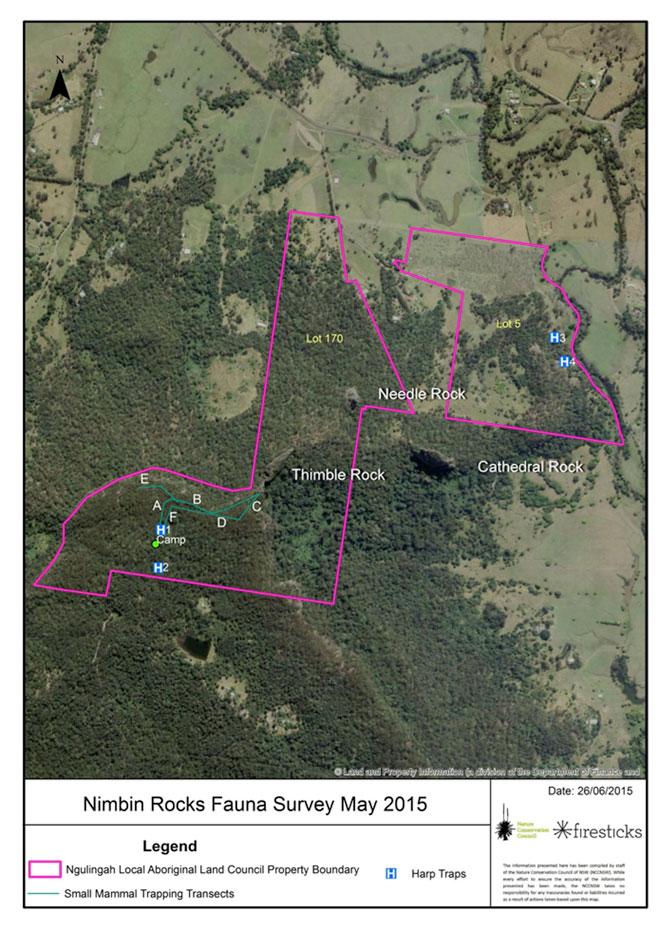 Nimbin-Rocks-faunal-survey-map