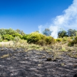 Green-Bluff-Burn-29