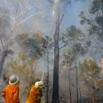 Firesticks Training at Yarrawarra Cultural Centre May 2014 - Burn 7