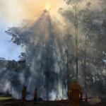 Firesticks Training at Yarrawarra Cultural Centre May 2014