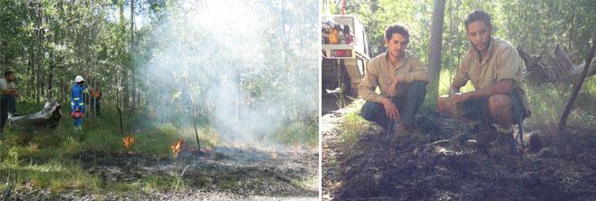 3-Minyumai-plot burn